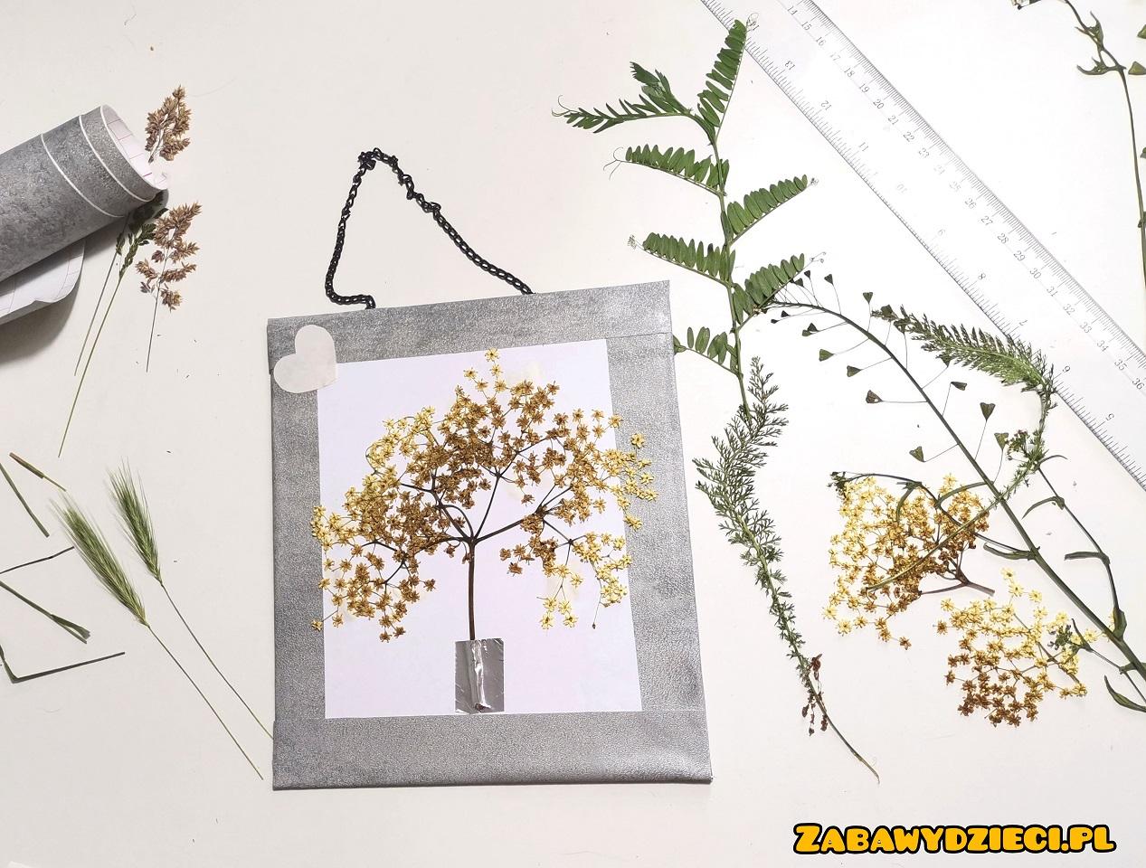 jak zrobić obraz z roślin w ramie