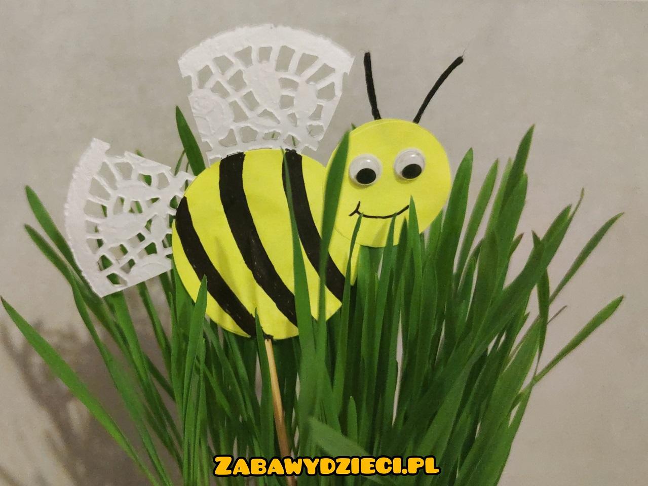 pszczółka pik z papieru - wiosna diy dla dzieci